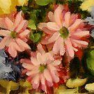 Daisies by Cathy Amendola