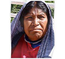 Indian Lady - Señora Indigena Poster