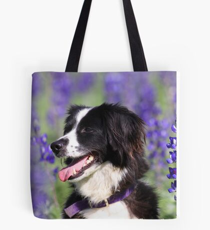 dog in a field of Blue lupin (Lupinus pilosus) flowers  Tote Bag