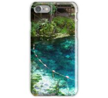 Spring Life iPhone Case/Skin