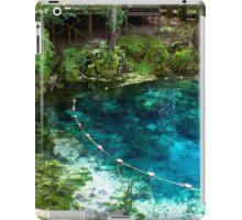 Spring Life iPad Case/Skin