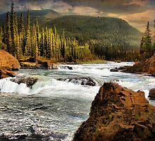 Elbow Falls by Vickie Emms