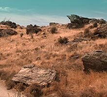 High Country NZ by SouthernScape
