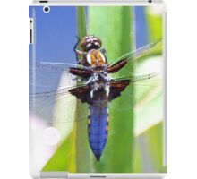 Broad Bodied Chaser Dragonfly iPad Case/Skin