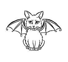 Bat Cat Photographic Print