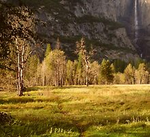 Sun Glow in Yosemite Valley by Elaine Bawden