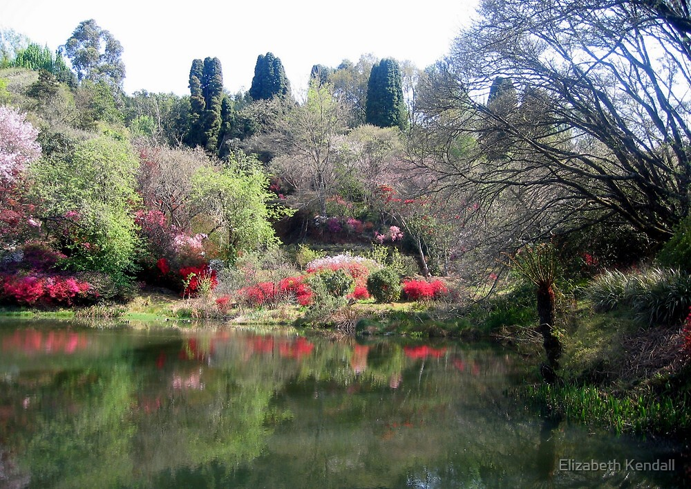 A garden for all seasons by Elizabeth Kendall