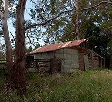 The Old Farm Shed by John Sharp