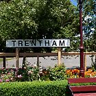 Seat at the Trentham Station by John Sharp