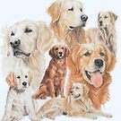 Golden Retriever 2 by BarbBarcikKeith
