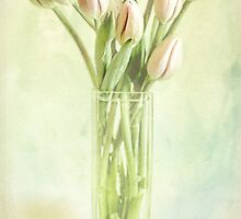 Watercolour Tulips by Margi