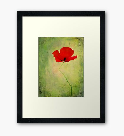 """Poppy (from """"Painted flowers"""" collection) Framed Print"""