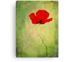"""Poppy (from """"Painted flowers"""" collection) Canvas Print"""
