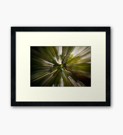 Rays. Framed Print