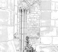 Furness abbey Pillar by Colin Bentham