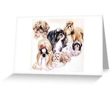 Shih Tzu 2 Greeting Card