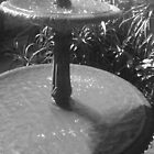 Fountain by Andrew Bourke