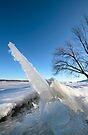Fortress of Solitude :)  Dunrobin Ontario by Debbie Pinard
