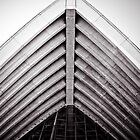 Sydney Opera House 3 by maxiwalton