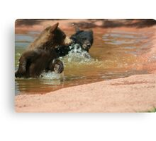 Water Games Canvas Print