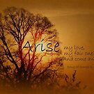 Arise My Love by Kelly Chiara