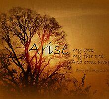 Arise My Love by reindeer