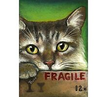 Fragile... Photographic Print