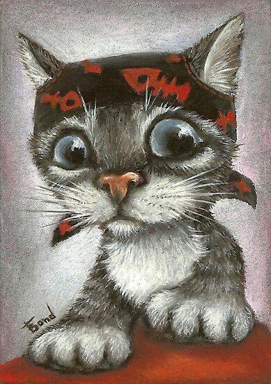 Pirate kitten by tanyabond