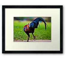 Dude! that's not The Tango steps... Framed Print