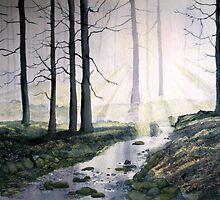 Rays of Hope by Glenn Marshall
