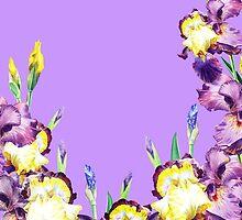 Iris Garden Lilac Skies by Irina Sztukowski