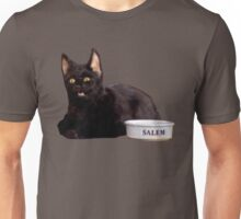 Salem | Steel Blue Unisex T-Shirt