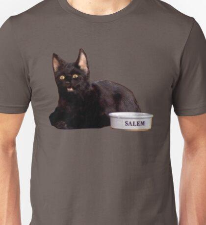 Salem | Steel Blue Unisex T-Shirt