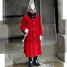 An english guard by akwel