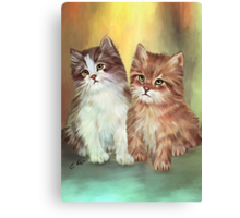 Two Friends Canvas Print