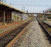 Pine Bluff, Arkansas Depot Museum by WildestArt