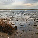 Lindisfarne remnants by StephenRB