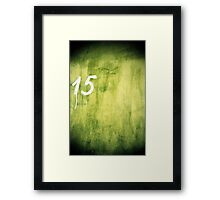 15 Framed Print