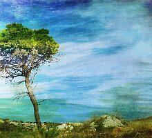 Lone Tree by EvaMarIza