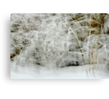 Snowstorm in Valserine forest Canvas Print