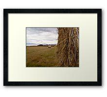 Southland - New Zealand Framed Print