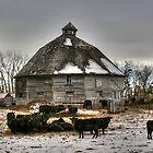 10 Sided Barn by Larry Trupp