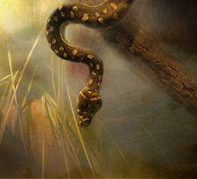Slither by Carol Bleasdale