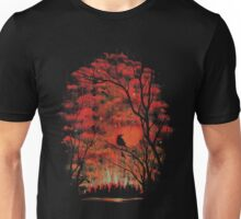 Burning In The Skies Unisex T-Shirt