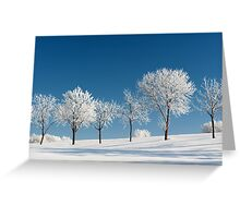Frosty Trees on a clear Winter day Greeting Card