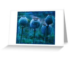 Andrea's Blue Poppies Greeting Card