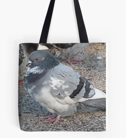White and Black Pigeon with Grey Area 3696 Tote Bag