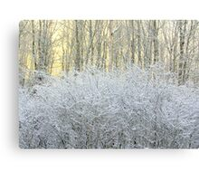 Ice and Snow Canvas Print