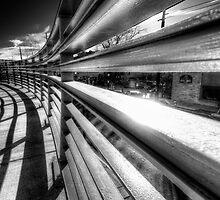 Light Rails by Bob Larson