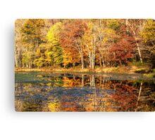Autumn Foliage at White's Mill Preserve Canvas Print